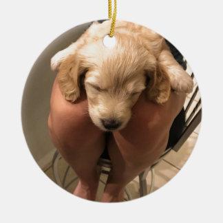 Ornamento De Cerâmica Filhote de cachorro do sono