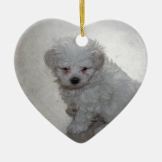 Ornamento De Cerâmica filhote de cachorro maltês