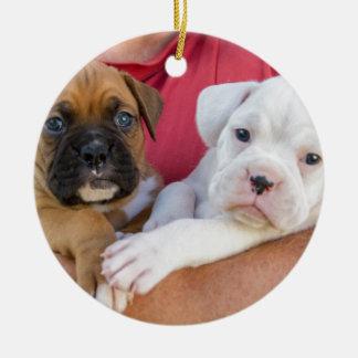 Ornamento De Cerâmica Filhotes de cachorro do pugilista