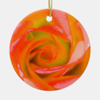 Ornamento De Cerâmica Fim-acima cor-de-rosa da laranja