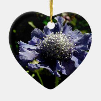 Ornamento De Cerâmica Flor azul de Scabiosa