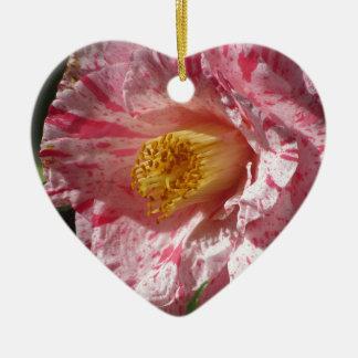 Ornamento De Cerâmica Flor branca listada único vermelho da camélia