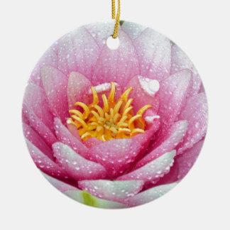Ornamento De Cerâmica Flor cor-de-rosa do lírio de água