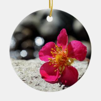 Ornamento De Cerâmica Flor cor-de-rosa do mistério