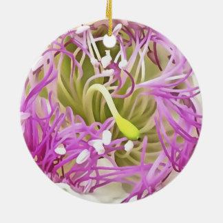 Ornamento De Cerâmica Flor da flor da alcaparra