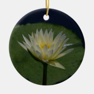Ornamento De Cerâmica Flor de Lotus branco Waterlily