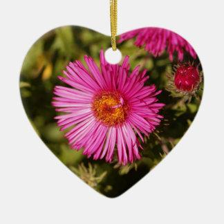 Ornamento De Cerâmica Flor de um áster de Nova Inglaterra