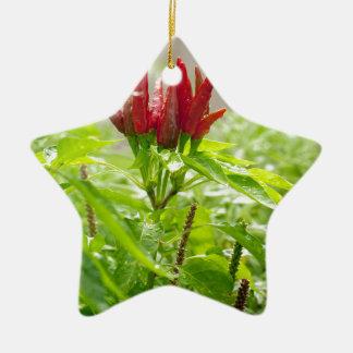 Ornamento De Cerâmica Flor do pimentão