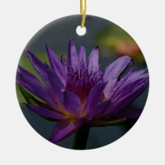 Ornamento De Cerâmica Flor roxa de Lotus Waterlily