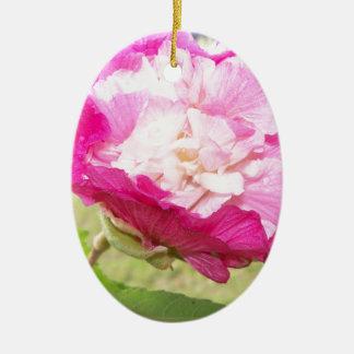 Ornamento De Cerâmica flor variável do rosa e a branca do hibiscus