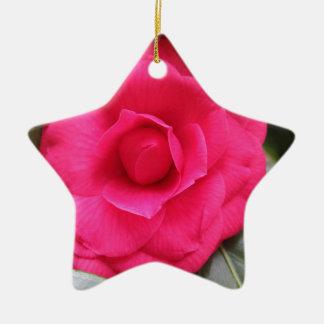 Ornamento De Cerâmica Flor vermelha do japonica Rachele Odero da camélia
