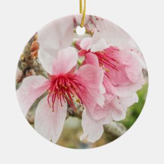 Ornamento De Cerâmica Flores de cerejeira cor-de-rosa -