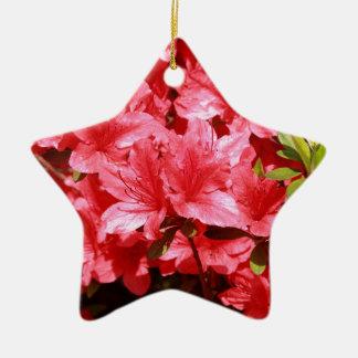 Ornamento De Cerâmica flores do vermelho da azálea