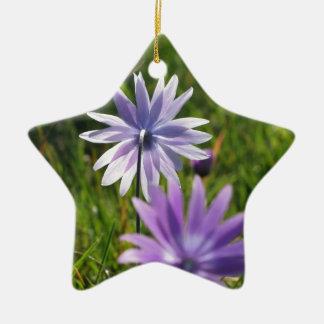 Ornamento De Cerâmica Flores roxas da margarida no fundo verde