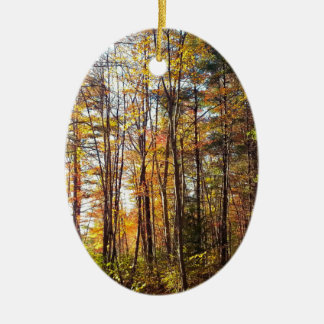 Ornamento De Cerâmica Floresta do outono de New Hampshire