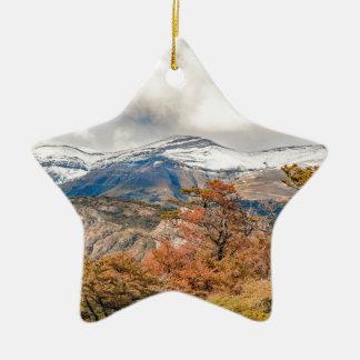 Ornamento De Cerâmica Floresta e montanhas nevado, Patagonia, Argentina