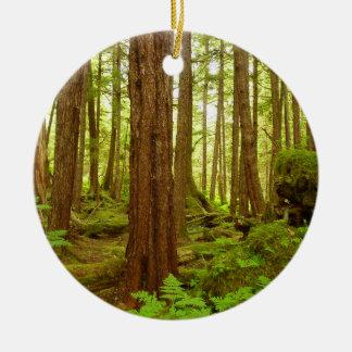 Ornamento De Cerâmica Floresta húmida temperada do Alasca