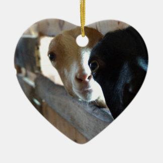 Ornamento De Cerâmica Foco da cabra