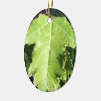 Ornamento De Cerâmica Folha