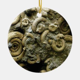 Ornamento De Cerâmica fósseis encaixados dos caracóis
