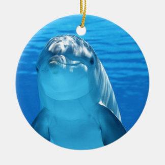 Ornamento De Cerâmica Foto amigável do golfinho
