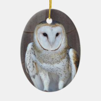 Ornamento De Cerâmica Foto da coruja de celeiro