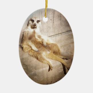 Ornamento De Cerâmica Foto de assento engraçada do efeito do Grunge de
