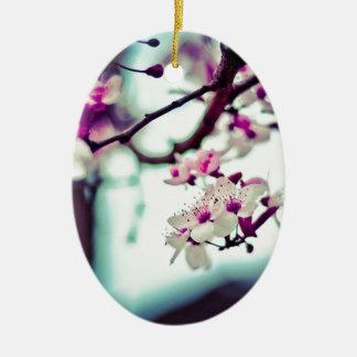 Ornamento De Cerâmica Foto Pastel da flor de cerejeira