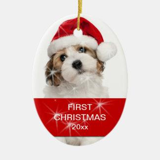 Ornamento De Cerâmica Foto personalizada do Natal do animal de estimação
