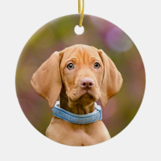 Ornamento De Cerâmica Foto puppyeyed bonito do filhote de cachorro do