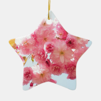 Ornamento De Cerâmica Fotografia japonesa cor-de-rosa da flor de