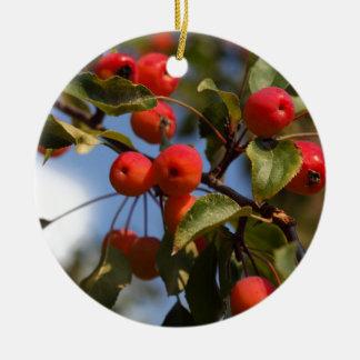 Ornamento De Cerâmica Frutas de uma árvore de maçã selvagem