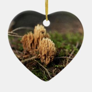 Ornamento De Cerâmica Fungos corais de mancha verdes (abietina de