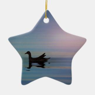 Ornamento De Cerâmica Gallinule liso