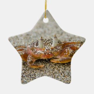 Ornamento De Cerâmica Garras do caranguejo