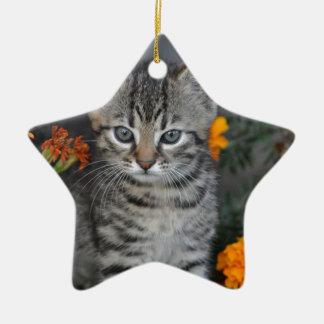 Ornamento De Cerâmica gatinho