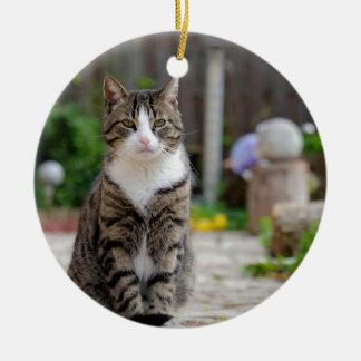 Ornamento De Cerâmica gato