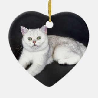 Ornamento De Cerâmica Gato branco que encontra-se no fundo preto isolado