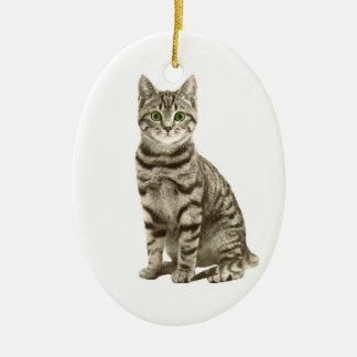 Ornamento De Cerâmica Gato de gato malhado