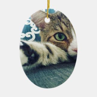 Ornamento De Cerâmica Gato de gato malhado bonito com olhos verdes