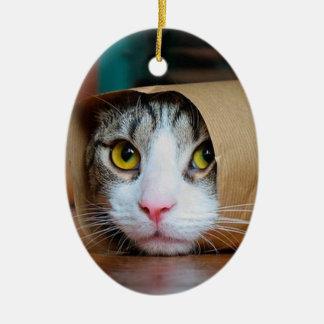 Ornamento De Cerâmica Gato de papel - gatos engraçados - meme do gato -