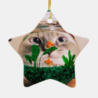 Ornamento De Cerâmica Gato e peixes - gato - gatos engraçados - gato
