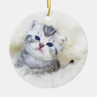 Ornamento De Cerâmica Gato novo velho de três semanas que senta-se na