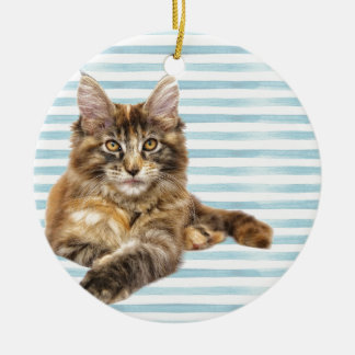Ornamento De Cerâmica Gato, racum de Maine