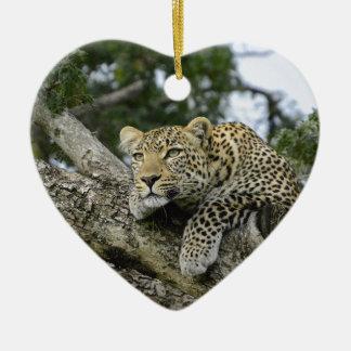 Ornamento De Cerâmica Gato selvagem animal do safari de África da árvore