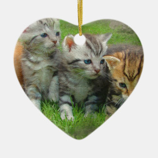 Ornamento De Cerâmica Gatos de Kettens do estilo da aguarela