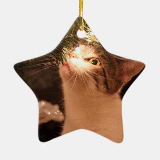 Ornamento De Cerâmica Gatos e luzes - gato do Natal - árvore de Natal