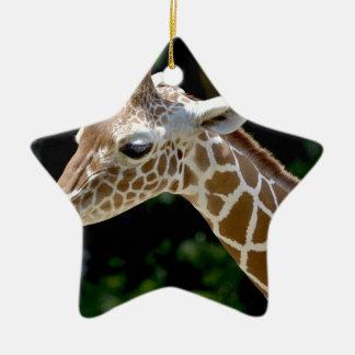 Ornamento De Cerâmica Girafa de Brown durante o dia
