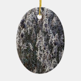 Ornamento De Cerâmica Grama de lingüeta velha em um dia de inverno