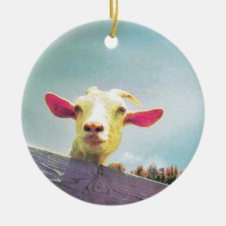 Ornamento De Cerâmica Grande de tudo cabra orelhuda cor-de-rosa do tempo